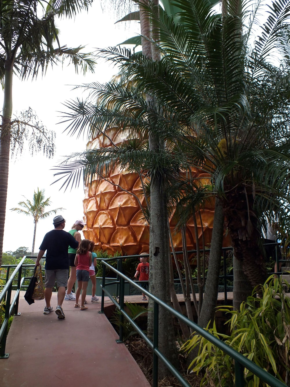 Big Pineapple tourist attraction in Nambour